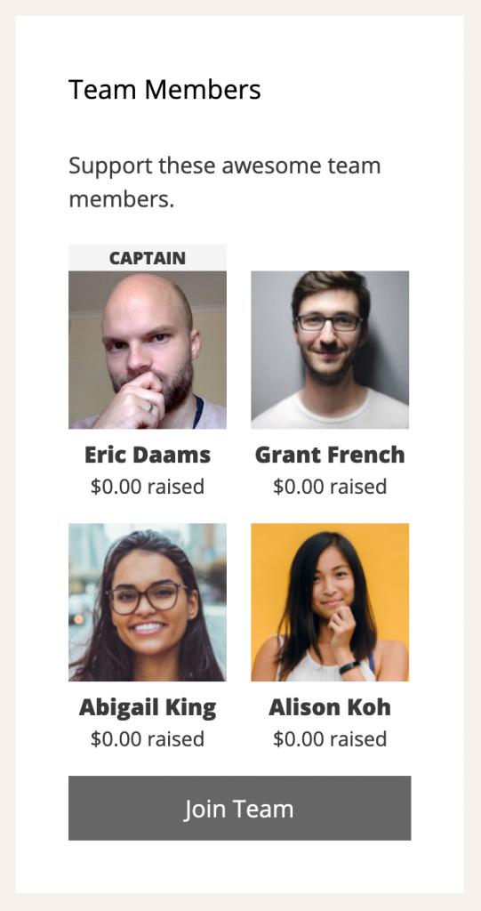 Screenshot of the Team Members widget in Charitable Ambassadors