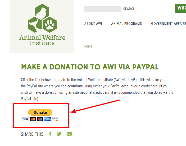 example of the paypal donate button on a website